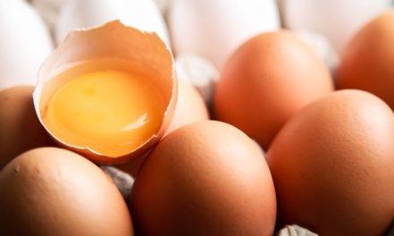 Ο Μύθος Του Αυγού