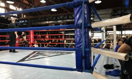 Sparring 12/11/2017 by Fighters Athanasopoulos