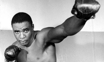 Γνωρίζοντας τους Boxer πυγμάχους